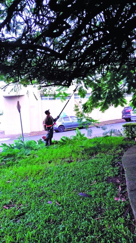 Diversas áreas públicas de Araguari receberam serviços de limpeza